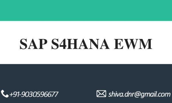 SAP S4HANA EWM VIDEOS