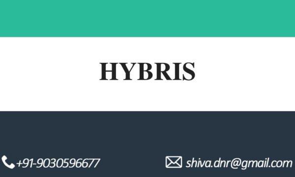 Hybris Videos