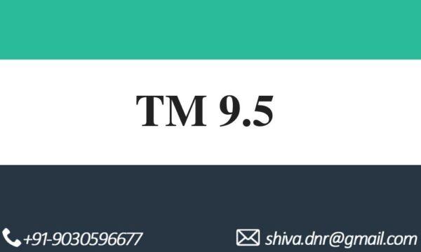 SAP TM9.5 VIDEOS