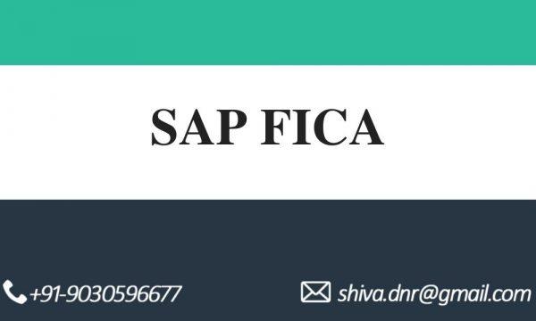 SAP FICA