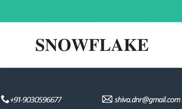 SNOWFLAKE videos